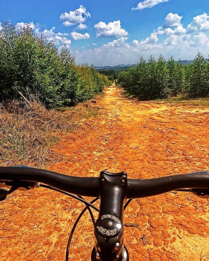 "27 curtidas, 2 comentários - Gabriel Godoy Barbosa (@gabrielgodbar) no Instagram: ""#swim #bike #run"""