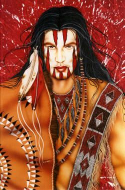 333 best images about native american in art on pinterest
