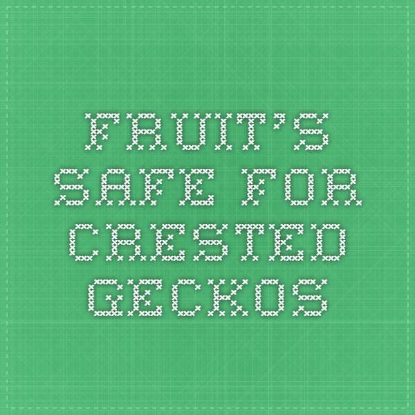 Fruit's Safe For Crested Geckos