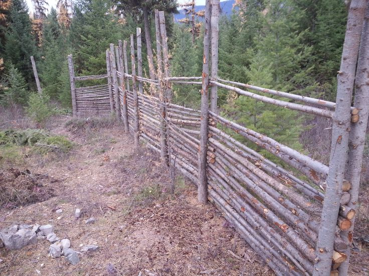 211 best garden fences images on pinterest garden fences fencing and deer fence