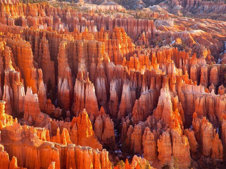 We couldn't just pick one in Utah: These three National Park gems all equally show off the grandeur off America's Southwest. Start in Zion, hiking the Narrows, a slender gorge flanked by soaring canyon walls, or climbing to Angel's Landing, a towering rock formation reached by a notoriously precipitous trail. A 90-minute drive brings you to Bryce Canyon's eerie, hoodoo-filled amphitheaters and natural arches. It's another 90 minutes to Capitol Reef, one of America's most underrated and…