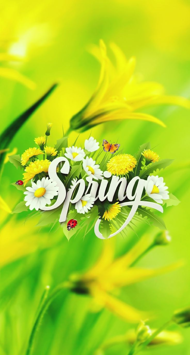 Hd wallpaper themes - Cool Best Free Spring Retina Lock Screen Home Screen Themes Skins For Iphone Ipad Hd Wallpaperwallpapersipodapp