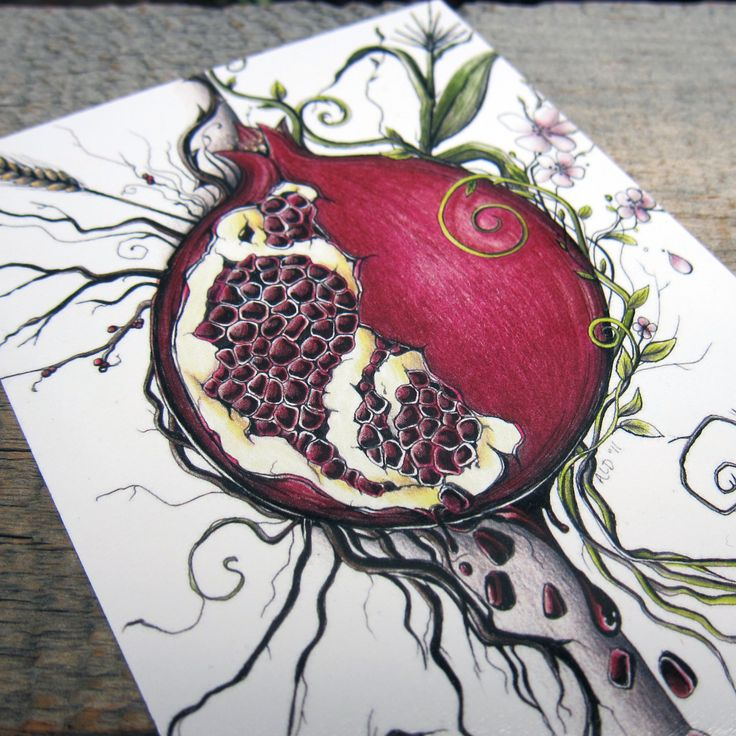 artifact persephone 39 s choice note card on matte linen paper pomegranates style and cards. Black Bedroom Furniture Sets. Home Design Ideas