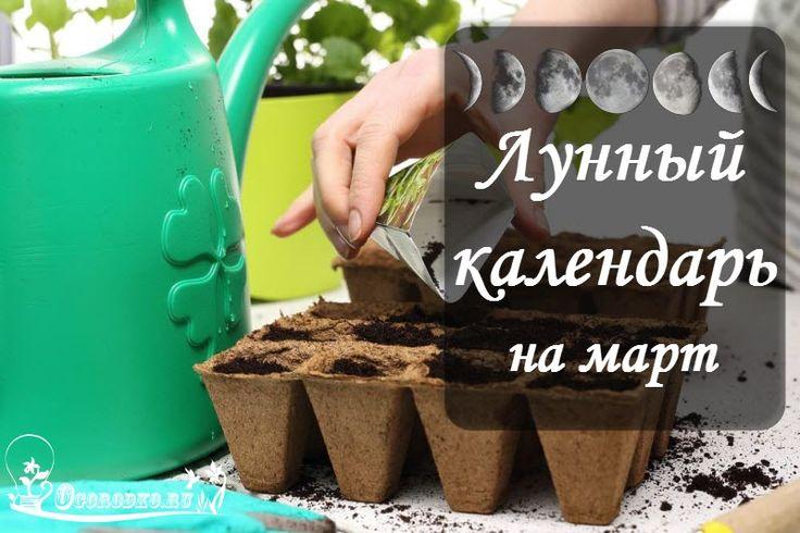 Лунный посевной календарь на март 2017 года для садовода и огородника – когда сажать и сеять на рассаду. Народные приметы марта