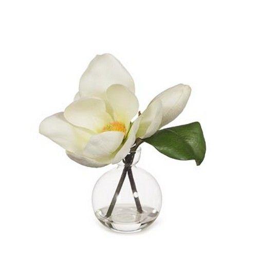 Magnolia Tree in Glass - White (24H cm) RRP $49