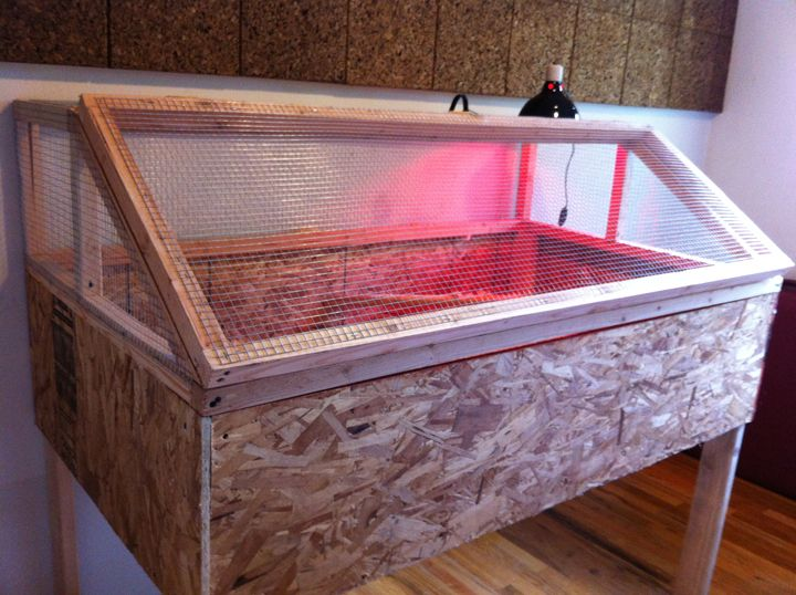 95 Best Brooder Box Ideas Images On Pinterest Chicken