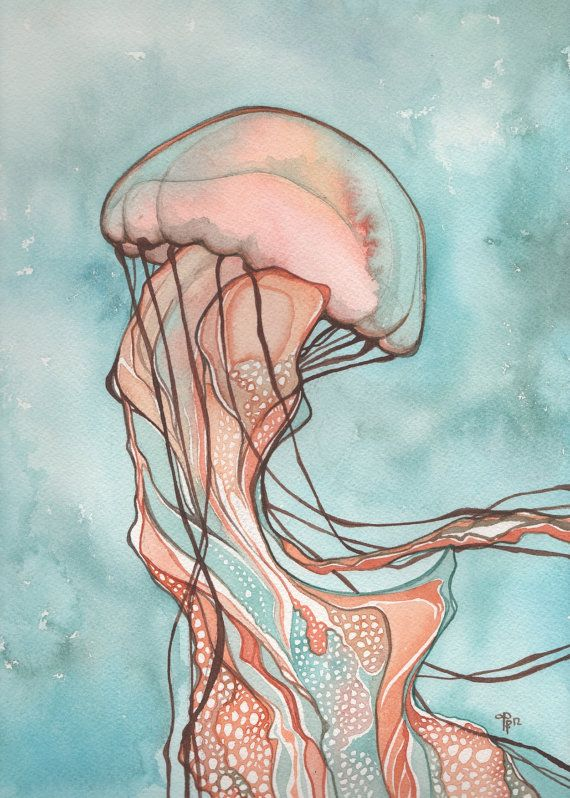 Best 20 jellyfish ideas on pinterest jelly fish for Jelly fish art