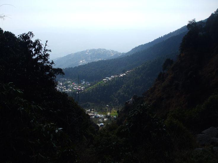 Triund trail
