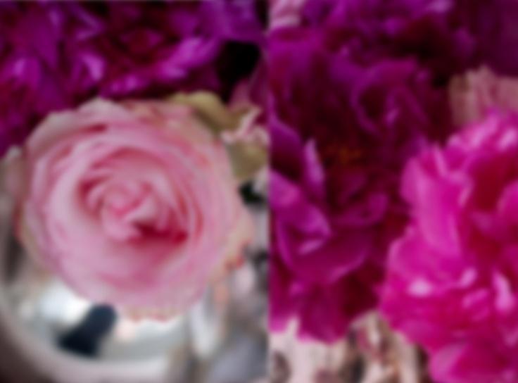Gracious, Charming, Stylish, Southern....Weddings & Events.