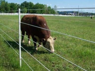 25 Best Ideas About High Tensile Fence On Pinterest