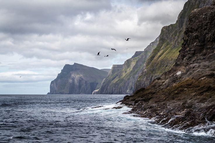 [21] Faroe Islands 2016 - Vestmanna Bird Cliffs by Alexander Friedrich on 500px