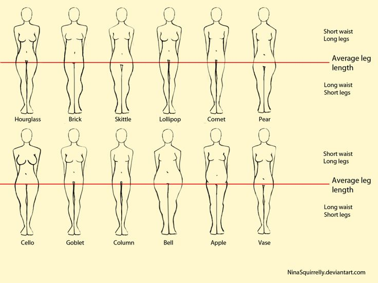 drawing diff female body types