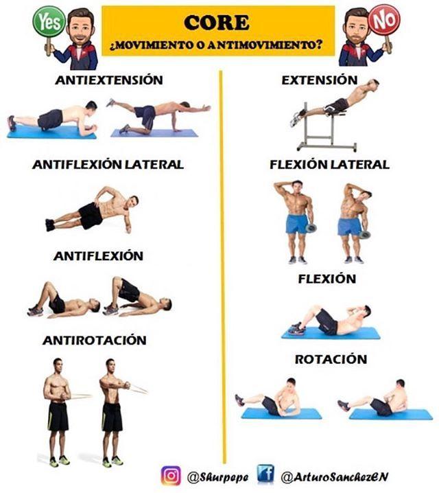 🔸🔊Hoy os voy a hablar del porque debemos trabajar la zona media corporal a través de ejercicios funcionales e isometricos. ▶️Los músculos de la zona media del cuerpo (abdomen, zona lumbar, glúteos,psoas...) por su diseño,son músculos estabilizadores, no músculos de movimiento,por lo tanto su función principal es IMPEDIR EL MOVIMIENTO. Si nos fijamos en deportes como puede ser la natación, ciclismo, carrera, además de la gran mayoría de deportes, apenas se realizan movimientos de flexión o…