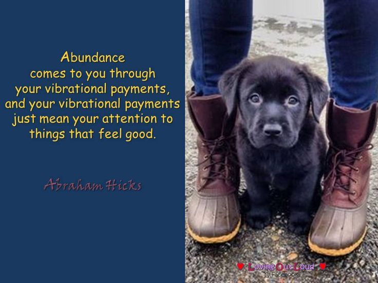 Abundance comes to you through your vibrational payments, and your vibrational payments just mean your attention to things that feel good.
