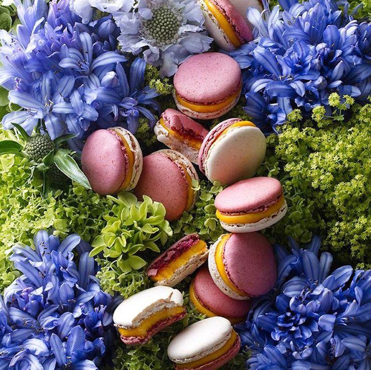 Te kolorowe, okrągłe ciasteczka zajmują już zasłużone miejsce w popkulturze. I to w pierwszym rzędzie. Koszulka z nadrukowanym makaronikiem jest powodem do chwały i zawistnych spojrzeń, witryny cukierni Ladurée za chwilę wyprą więżę Eiffla z piedestału najchętniej fotografowaneg