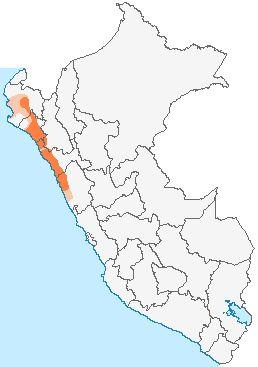 Localização de Civilização MOCHE  Mapa mostrando a área de influência moche.  História   • 100 AC.Fundação   • 800 DCDissolução