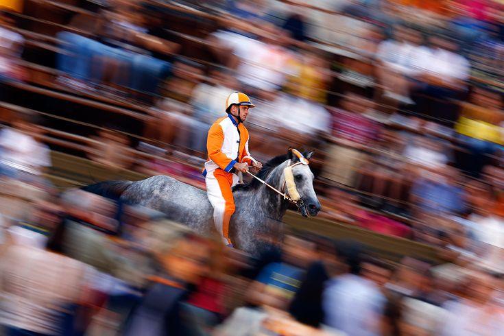Giuseppe Zedde of Leocorno (Unicorn) parish rides his horse during the last day of practice (Palio di Siena)