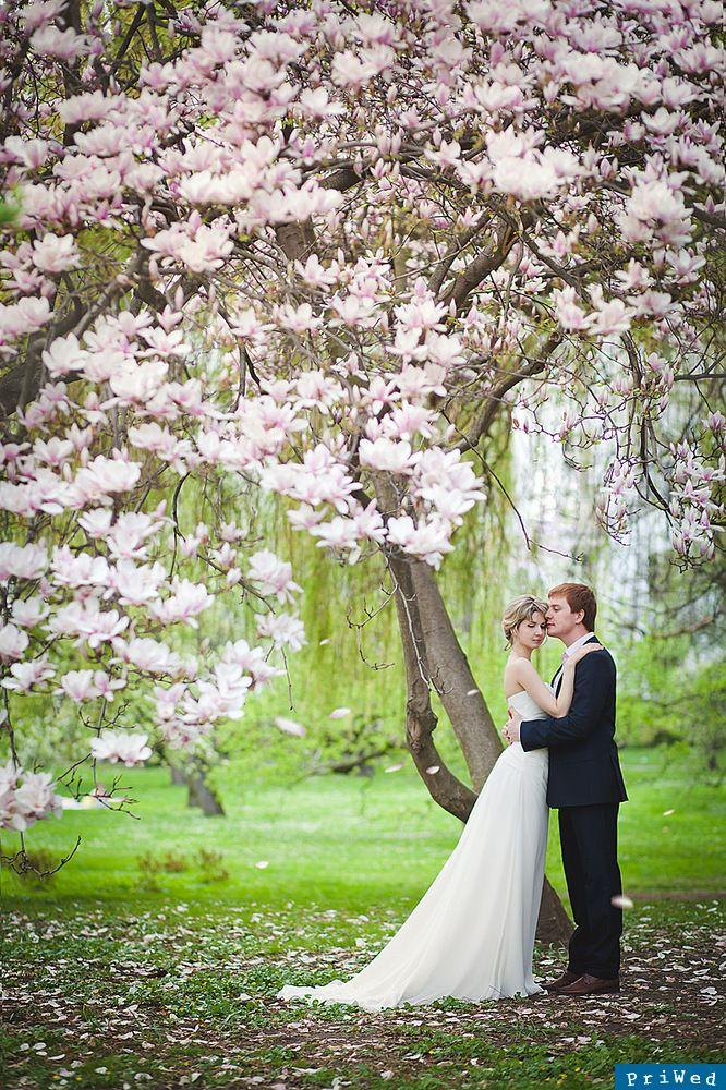 Фотографии на прогулке по Праге в день свадьбы