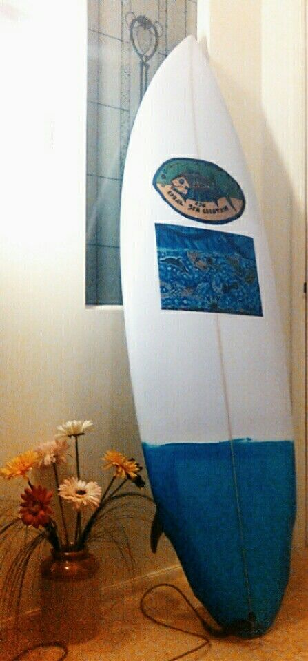 CSC surfboard & artwork gives SB cool sytle.