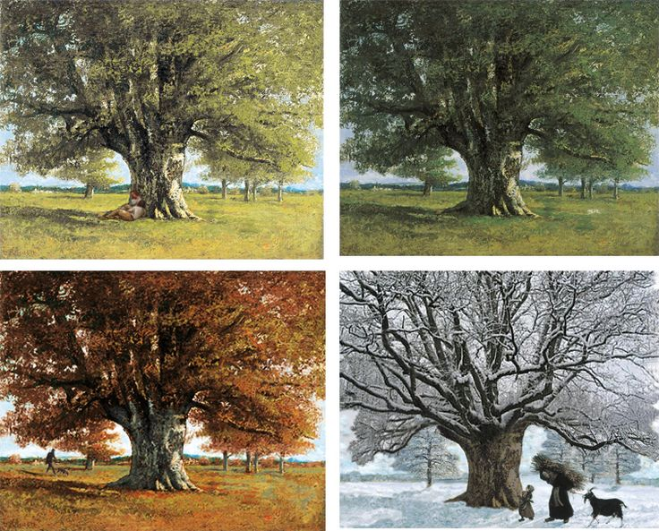 Les 4 saisons du Chêne de Flagey. Ou comment imaginer le temps qui passe indéfiniment, ou les ...