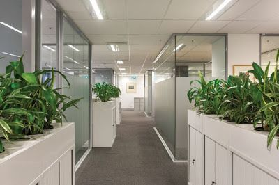 If you are thinking about updating your office, you need to ensure that you hire the best commercial fit out Melbourne for the job. Here are the tips to ensure that you choose the right one.