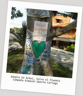 ALMACEN OPORTO: Vía @JorgeEMoncadaA: No A La Tala De Los Samanes De Cartago #Cartago #pereira