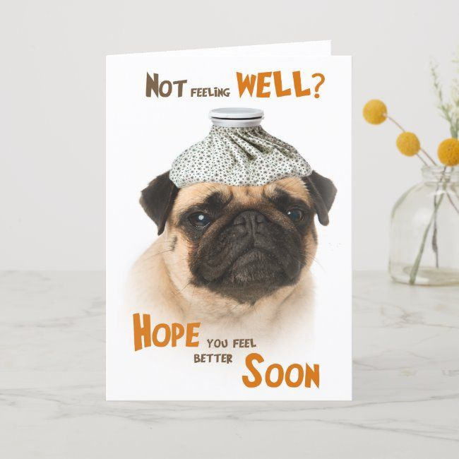 Get Well Card With A Pug Dog Not Feeling Well Zazzle Com In 2020