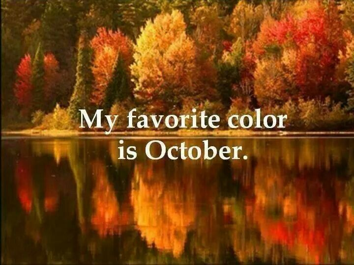 My Favorite Color Is October. October Is Beautiful. And My First Baby Was  Born In October!