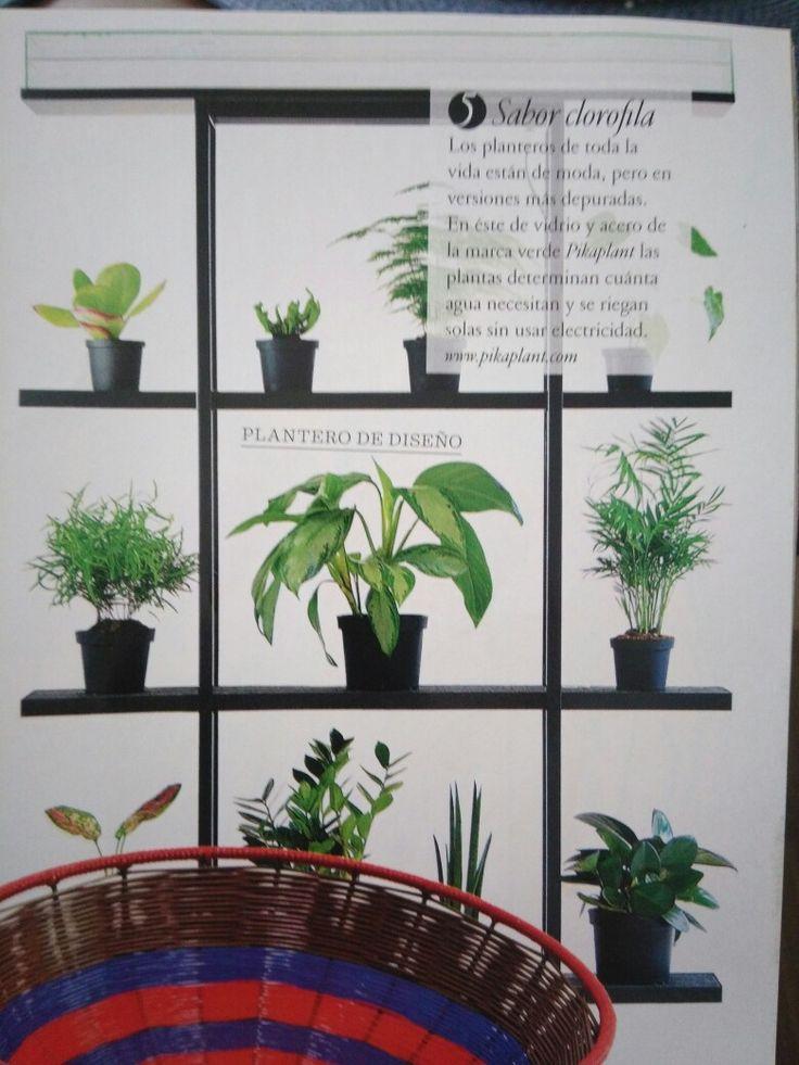 Plantero diseño salón