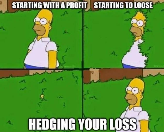 Hedge Stocks Stockmarket Marketing Meme Safe Investments Funny Memes
