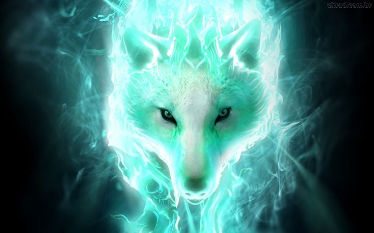 White spirit wolf Computer Wallpapers, Desktop Backgrounds ...