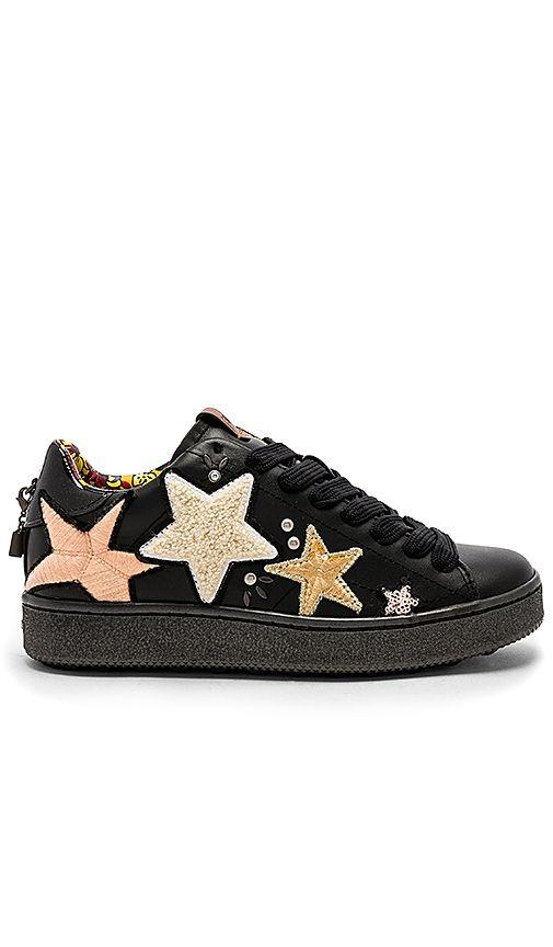 Coach 1941 C101 Star Pathes Sneaker