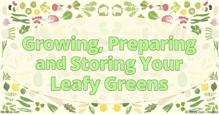 One of the easiest and most nutritious veggies to start with: Leafy greens, from Swiss chard to arugula to frilly red leaf lettuce. http://articles.mercola.com/sites/articles/archive/2016/10/24/growing-leafy-greens.aspx