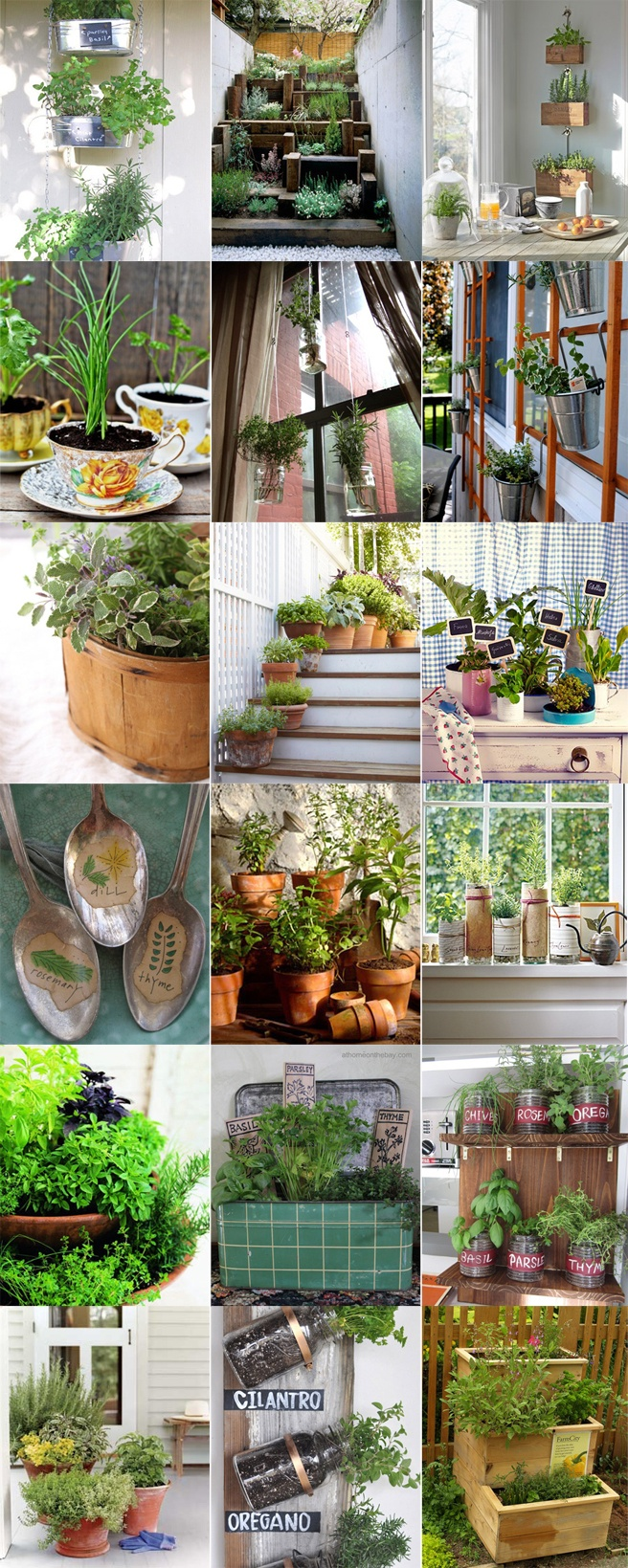 A Herbs Garden At Home | Horta De Ervas Caseira Part 76