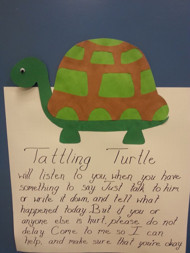 essay on turtle poem Essay on turtle poem our mission at truckstrong is to promote and encourage health and vitality within the trucking industry with years of truck driving and.