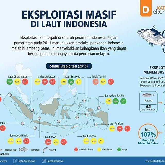 [Infografik] Eksploitasi Masif di Laut Indonesia  KATADATA - Eksploitasi ikan secara masif terjadi di seluruh perairan Indonesia. Pemetaan tingkat penangkapan ikan oleh Kementerian Kelautan dan Perikanan (KKP) menunjukkan kebanyakan status eksploitasi ikan demersal, pelagis besar, dan udang telah mencapai titik maksimum. Penangkapan ikan di beberapa wilayah bahkan masuk zona merah karena melebihi ambang batas yang ditetapkan.  Penangkapan berlebih merupakan eksploitasi ikan yang melampaui…