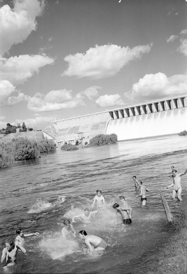 Migrants from Bonegilla Migrant Camp swimming in the Hume Weir near Albury