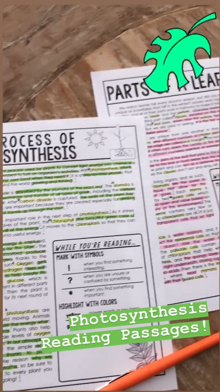 Photosynthesis Reading Passages Questions Annotations