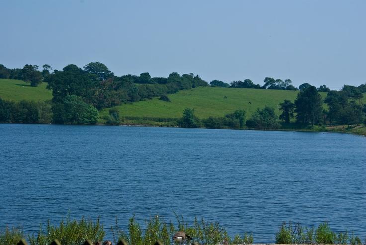 Thornton Reservoir, Leicestershire, England, Summer 2012