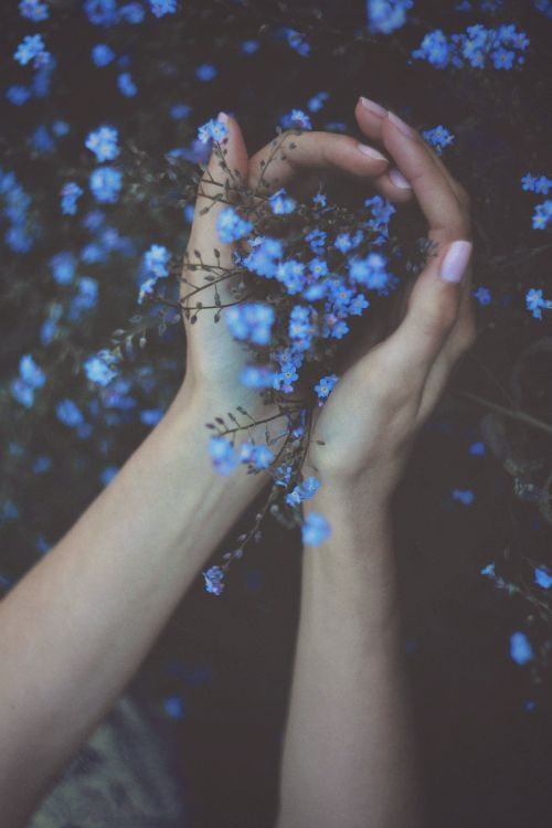 Inspiring image blue, cute, flowers, grunge, nature by Sharleen - Resolution - Find the image to your taste Aesthetic Colors, Aesthetic Pictures, Blue Aesthetic Tumblr, Blue Aesthetic Grunge, Rainbow Aesthetic, Summer Aesthetic, Street Style Photography, Aesthetic Photography Grunge, Pastel Photography