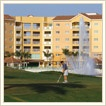 Marriott Miami Florida Timeshares