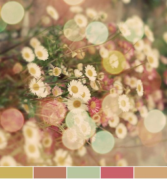 September Wedding Ideas: 17 Best Ideas About September Wedding Colors On Pinterest