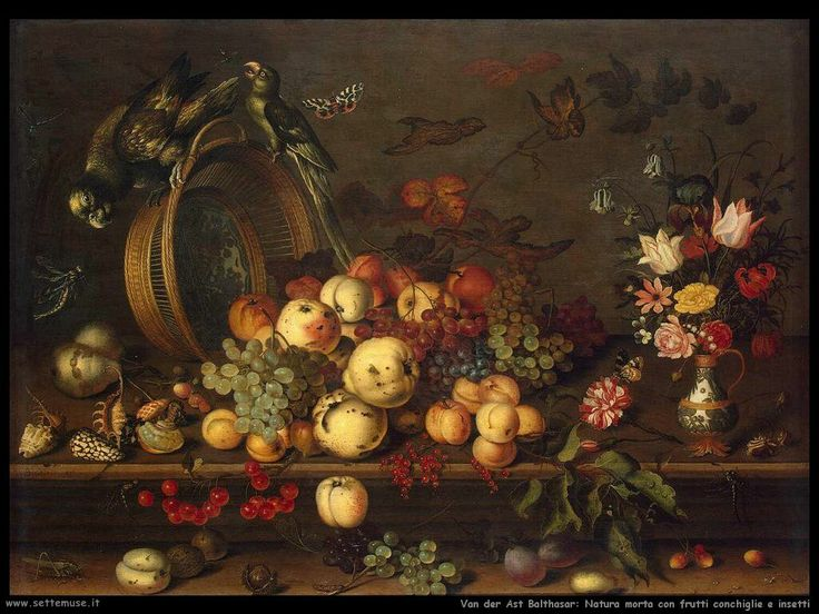van_der_ast_balthasar_506_still_life_with_fruits_shells_and_insects.jpg (1024×768)