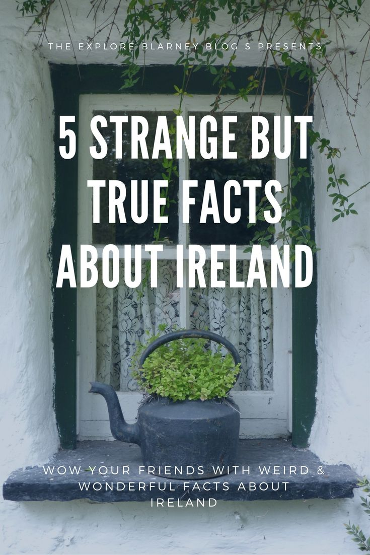 Entertain & delight with our weird facts about the Emerald Isle!