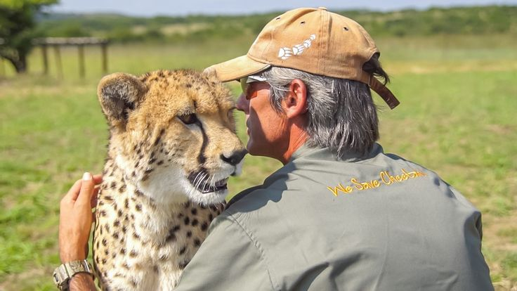 The Cheetah at Kwa Cheetah outside Ladysmith in South Africa