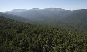 La Unesco aprueba la Reserva de la Biosfera del Real Sitio de San Ildefonso- El Espinar