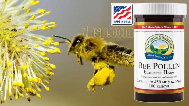 Пчелиная пыльца НСП в капсулах для детей, женщин, мужчин. Цена.