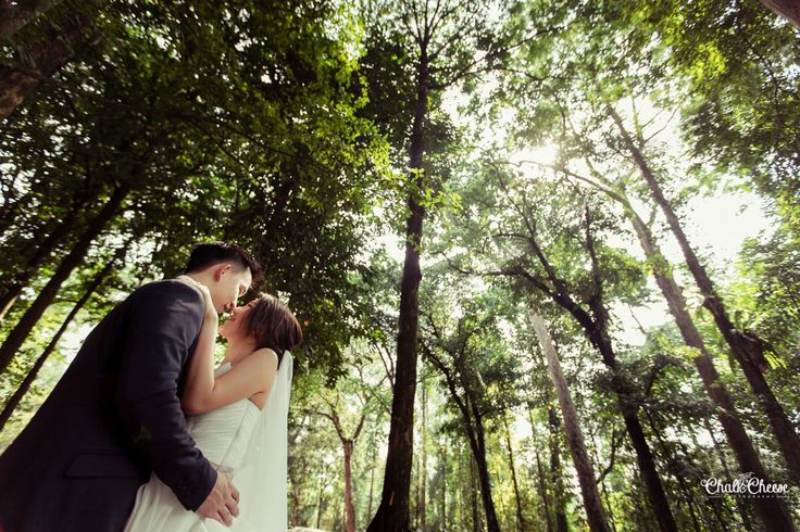 Pre-Wedding Session at FRIM, Tropical Rainforest, Malaysia by Chalk and Cheese Photography (www.chalkandcheesephotography.com)