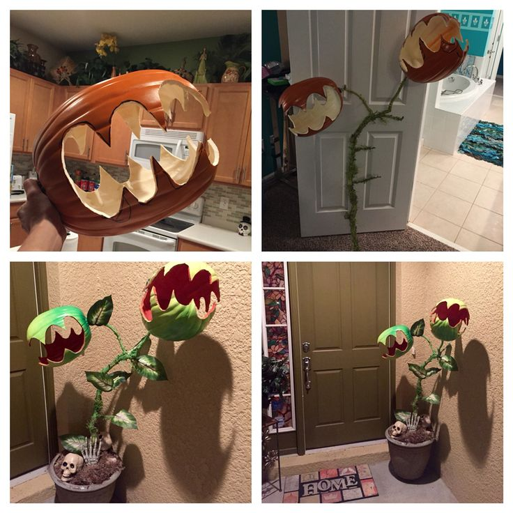 Man eating plant Halloween prop.   So easy! Made from craft pumpkins, tree branch, silk leaves and spray paint. Add some skulls and bones from the dollar store! This cost me about $42 to make. I had the planter pot.