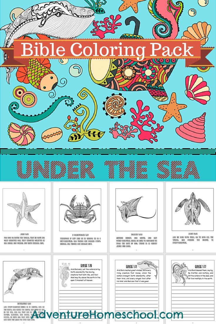 The zoology coloring book - Ocean Themed Bible Coloring Pack
